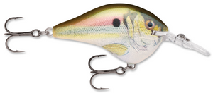 Rapala DT Series DT-6 Crankbait - Direct Fishing Sales
