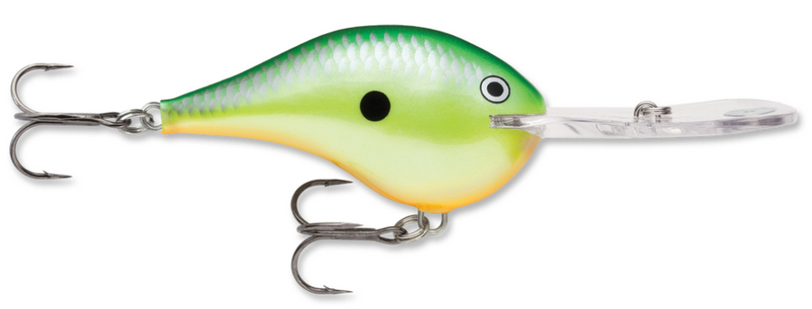 Rapala DT Series DT-20 Crankbait - Direct Fishing Sales