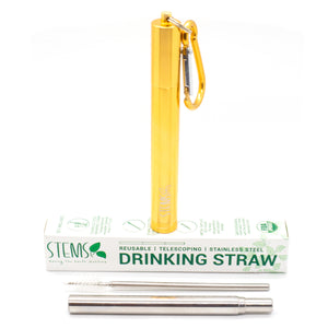 Collapsible Metal Drinking Straw - Made from Stainless Steel, Includes Carrying Case, Keychain, Reusable Telescoping Straw & Cleaning Brush - Saving The Earth Matters