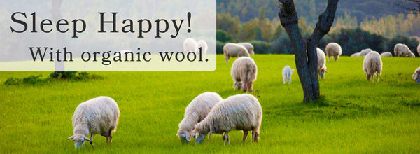 Wool Might Just be the Perfect Fiber
