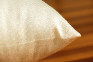 Pillows - Organic Cotton Pillow Encasement