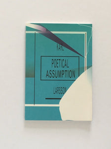 Political Assumption by Karl Larsson