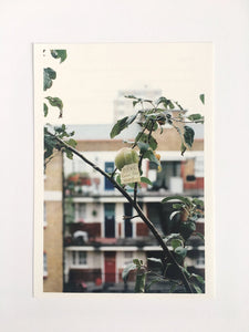 "Wolfgang Tillmans book ""If One Thing Matters, Everything Matters"" - Card"