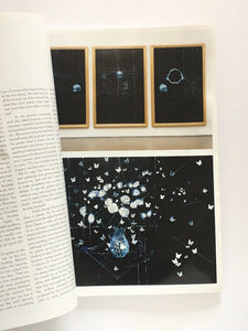 Art Review / Damian Hirst Oct 2009