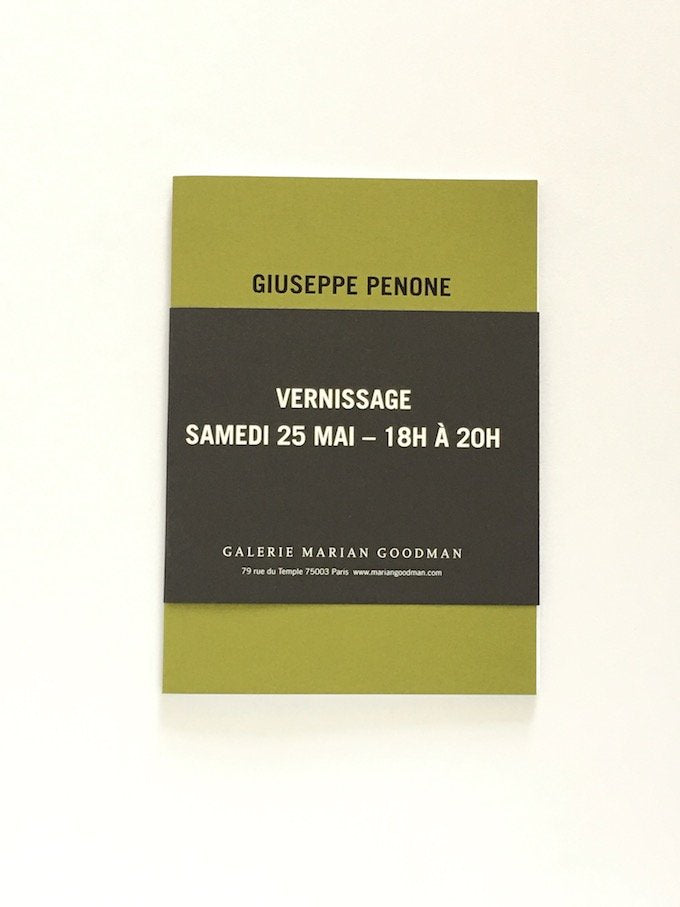 Giuseppe Penone - Exhibition catalogue Marian Goodman Gallery Paris 2013