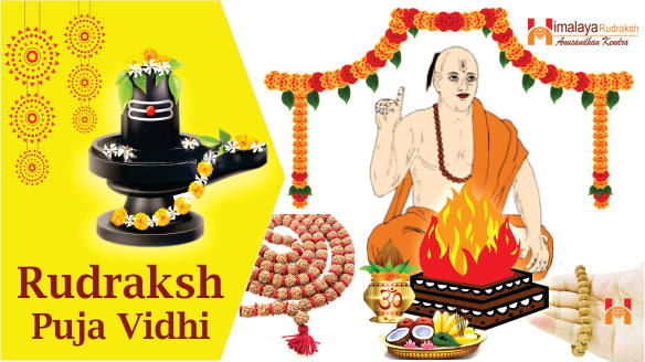 RUDRAKSH PUJA VIDHI - BENEFITS - EFFECTS - FULL GUIDE TO WEAR RUDRAKSH