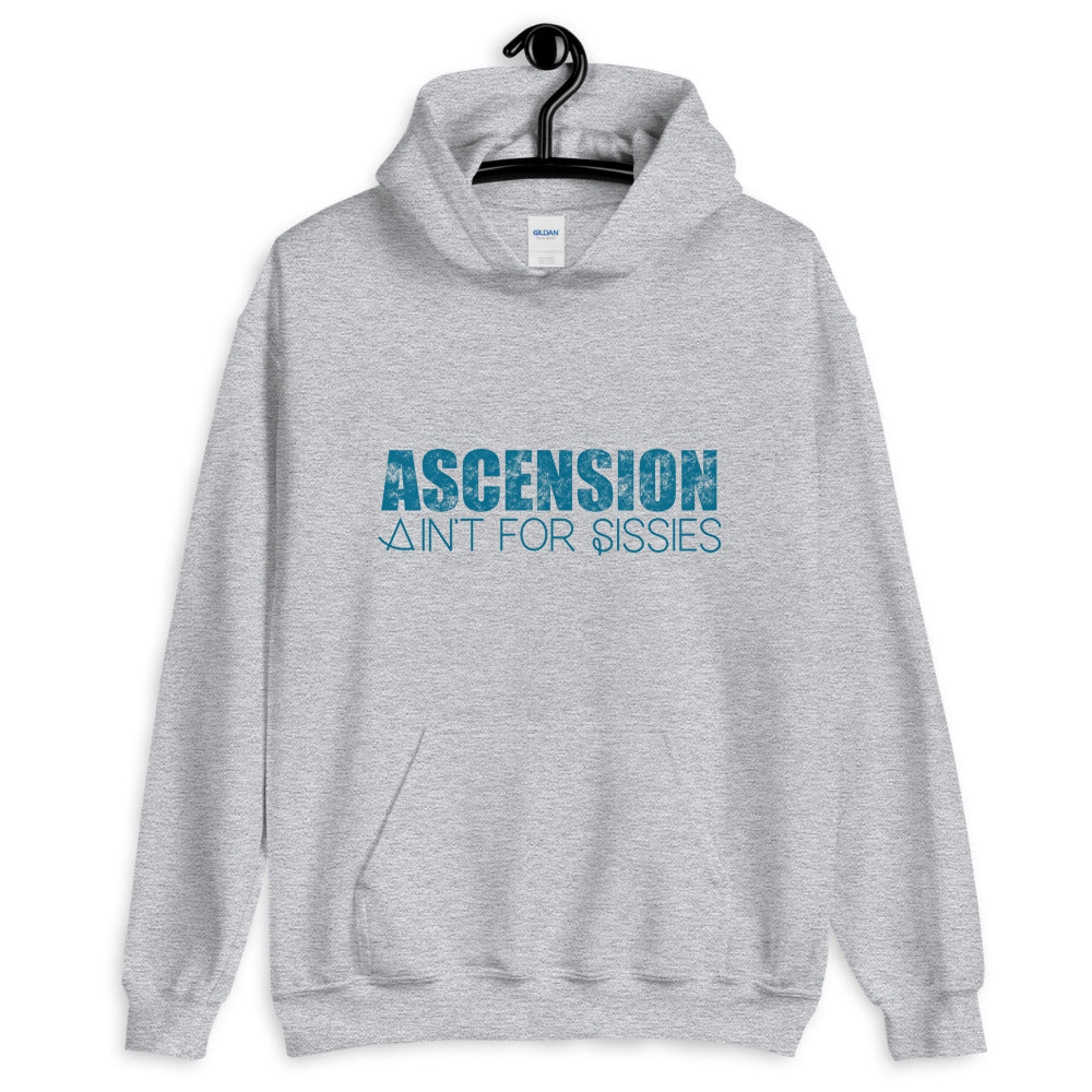 Ascension Ain't For Sissies - Men's Hoodie - StarSeed Gear