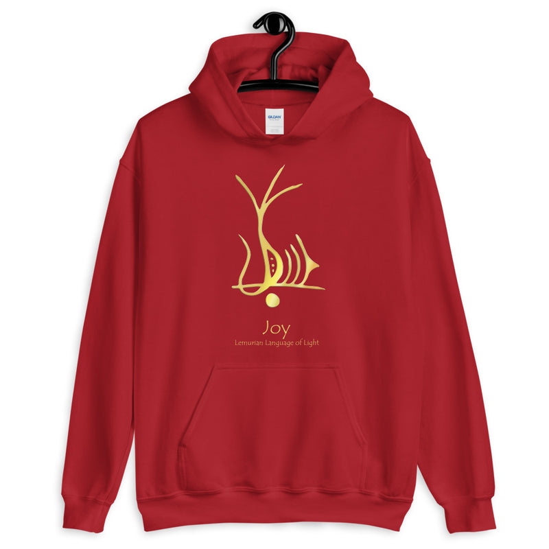 Lemurian Light Language Joy - Men's Hoodie - StarSeed Gear