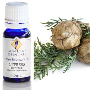 Gumleaf Pure Essential Oil - Cypress