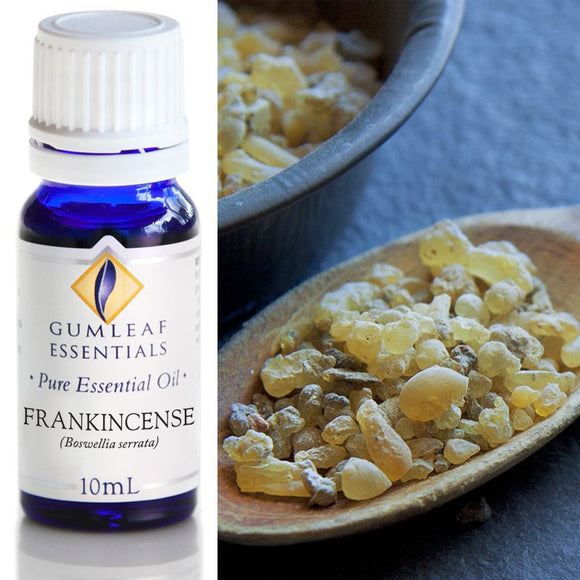 Gumleaf Pure Essential Oil - Frankincense