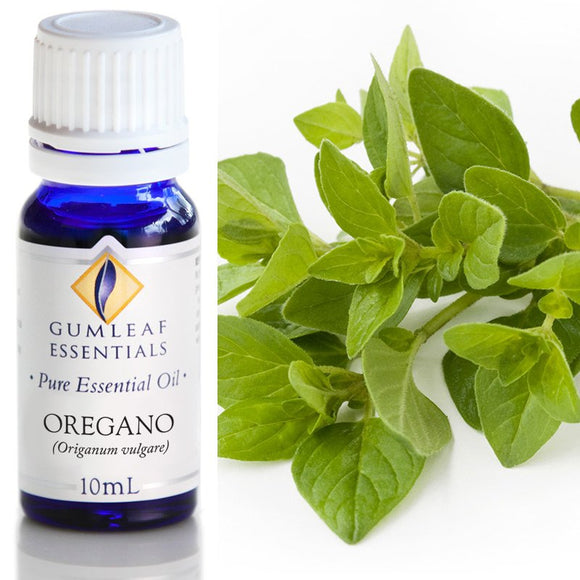 Gumleaf Pure Essential Oil - Oregano