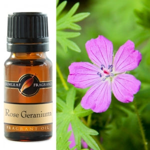 Rose Geranium Fragrance Oil