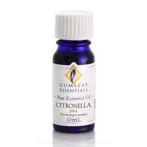 Gumleaf Pure Essential Oil - Citronella