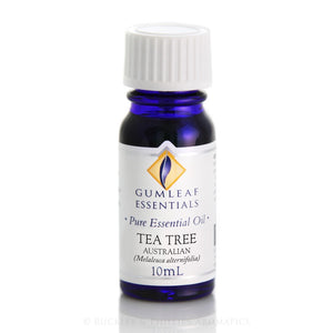 Gumleaf Pure Essential Oil - Australian Tea Tree