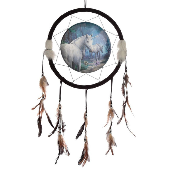 The Journey Home Dreamcatcher 33cm (Lisa Parker)