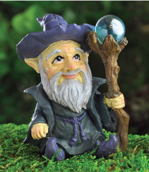 Wizard Fairy Garden - Fiddlehead