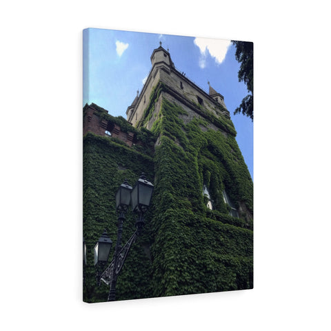 Ivy Covered House Canvas Print, Budapest, Hungary