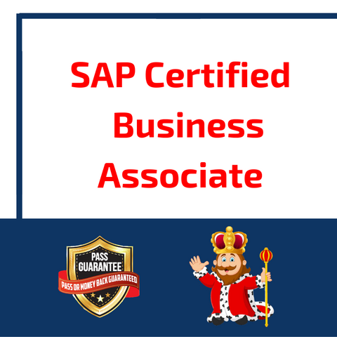 SAP Certified Business Associate