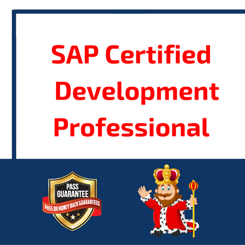 SAP Certified Development Professional