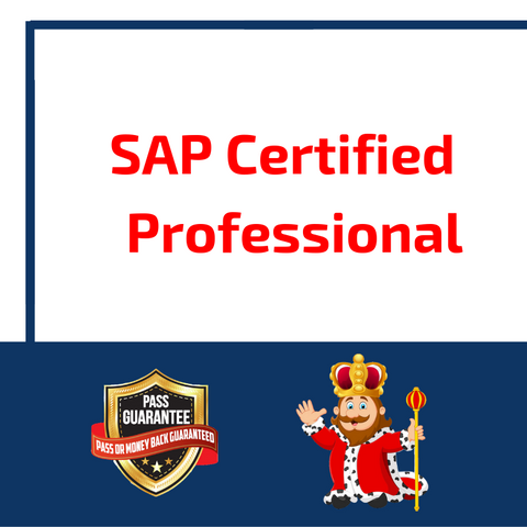 SAP Certified Professional
