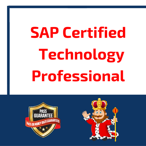 SAP Certified Technology Professional