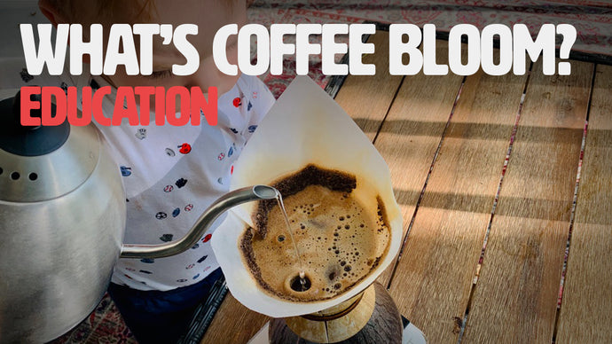 Let's Talk Coffee Bloom, What Is It and Does It Really Matter?