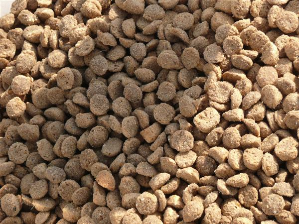 Doggy Deli Puppy Dry Kibble 500g