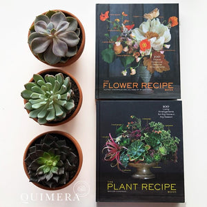 THE FLOWER / PLANT RECIPE BOOK (libro de flores y plantas)