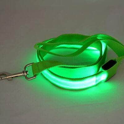 Dog's Nylon LED Leash