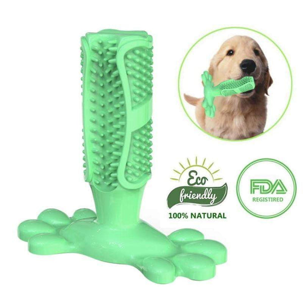 Toothbrush Pet Stick