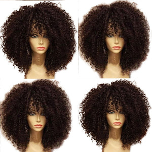 Kinky Curly Lace Front Human Hair Wigs