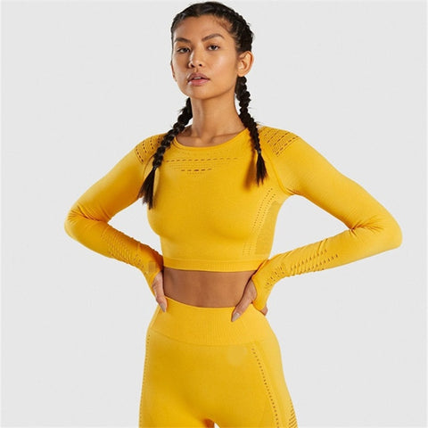 Women Seamless 2 Piece Set Sport Suit Gym Workout Long Sleeve Sportswear