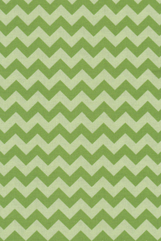 Popeline Riley blake - MD.RB.110 - Green chevron