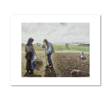 Camille Pissarro, Peasants in the Fields, Eragny, 1890, Albright-Knox Art Gallery, Buffalo, NY. Fine Art Prints in various sizes by Museums.Co