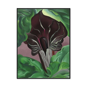 Jack-in-Pulpit - No. 2 by Georgia O'Keeffe Artblock