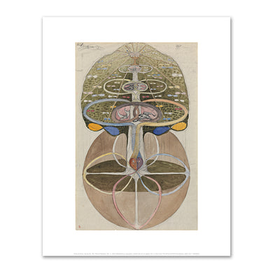 Hilma af Klint, Series W, The Tree of Wisdom, No. 1, 1913, Fine Art prints in various sizes by Museums.Co
