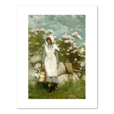 Winslow Homer, Girl and Laurel, Fine Art Print in various sizes by Museums.Co