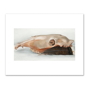 Horizontal Horse's or Mule's Skull with Feather by Georgia O'Keeffe
