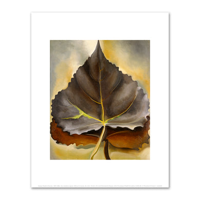 Georgia O'Keeffe, Grey and Brown Leaves, 1929, Fine Art Prints in various sizes by Museums.Co