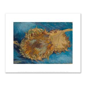 Vincent van Gogh, Sunflowers, 1888, Fine Art Prints in various sizes by Museums.Co