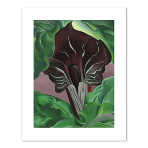 Georgia O'Keeffe, Jack-in-Pulpit - No. 2, 1930, Fine Art Print in various sizes by Museums.Co