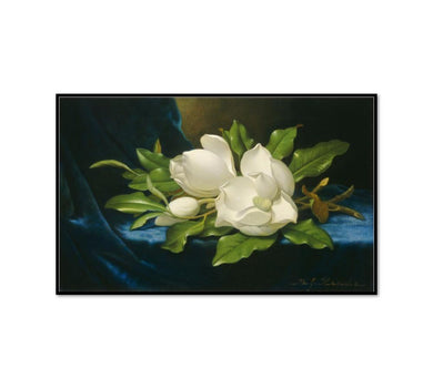 Giant Magnolias on a Blue Velvet Cloth by Martin Johnson Heade Artblock