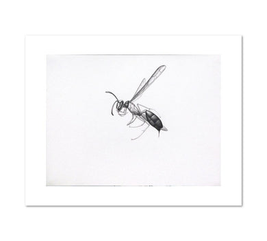 Alexis Rockman, Wasp 2, 1994, Fine Art Prints in various sizes by Museums.Co
