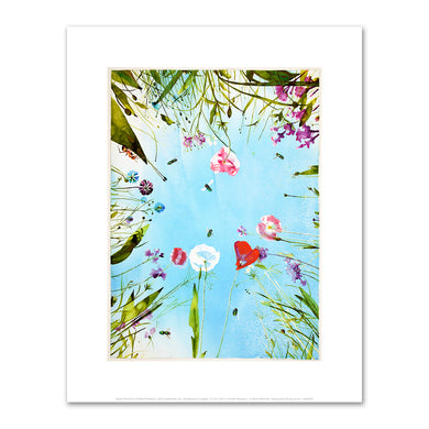 Alexis Rockman, Untitled (Meadow), 2013, Fine Art Prints in various sizes by Museums.Co