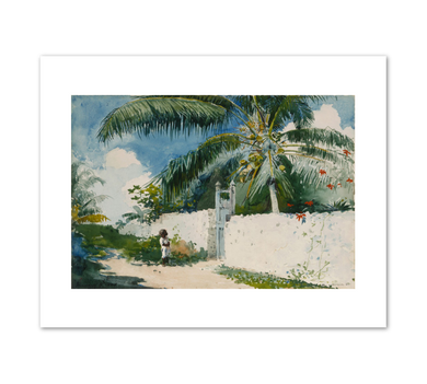 Winslow Homer, A Garden in Nassau, 1885, Fine Art Prints in various sizes by Museums.Co