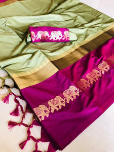 Beauteous pista wine Color Designer Cotton Silk Saree