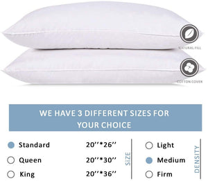 Wht Goose 5/95 Bed Pillow  -Std.  (10)