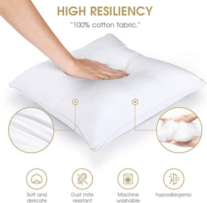 Starfil Pillow Insert - 18''