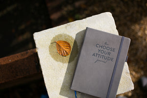 The CHOOSE YOUR ATTITUDE Journal