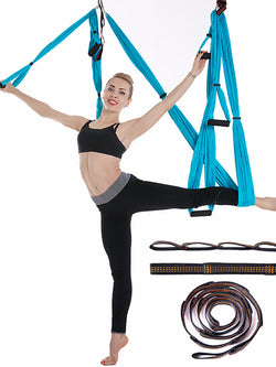 AERIAL YOGA SWING - AOMEGA Marketplace